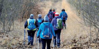 Marche Adeps Neder-Over-Heembeek