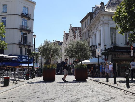 La rue Sainte-Catherine piétonne et commerçante
