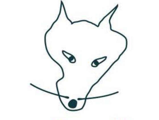 Le Wolf - animations et ateliers