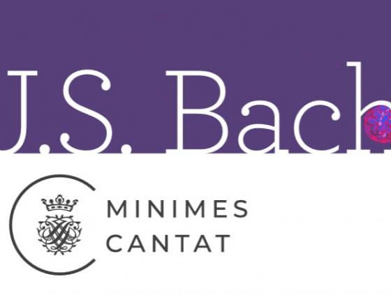 Bruxelles, l'été de l'orgue