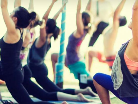 Yoga and Vegan Festival