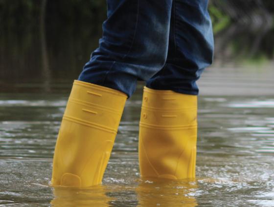 Lutte contre les inondations à Laeken