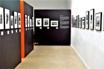 Exposition. Léonard Freed, Worldview