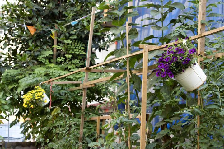 Grande enquête sur les jardins privés