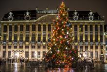 Brussels by Lights - sapin de Noël Grand-Place - cliquez pour agrandir